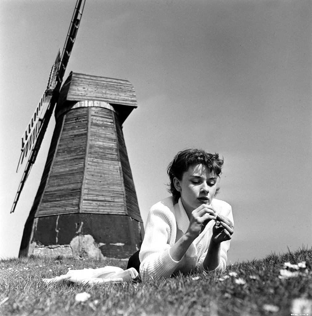 audrey hepburn rottingdean windmill
