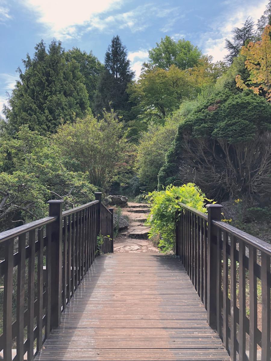 preston park rock garden waterfall