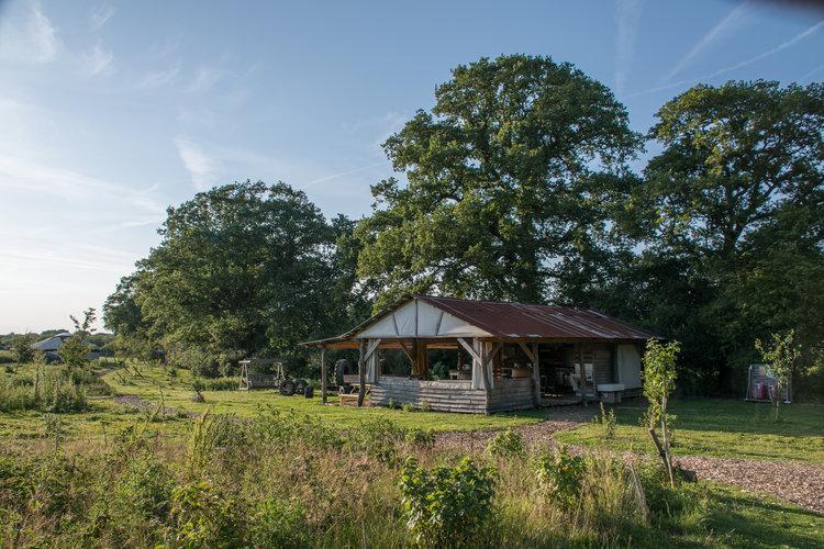knepp wildland camp kitchen